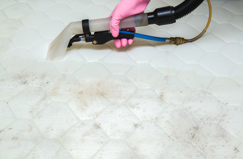bedbug-control-through-vacuum-cleaning