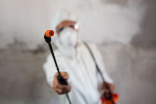 -importance-of-pest-management