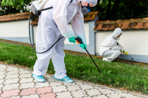Pest Control For Landed Properties