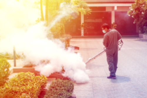 Mistakes to Avoid When Using Mosquito Fogger